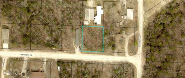 4074 White Oak Road, Merriam Woods, MO 65740 (MLS #60100914) :: Team Real Estate - Springfield