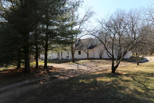 2925 S Farm Rd 241, Rogersville, MO 65742 (MLS #60101277) :: Team Real Estate - Springfield