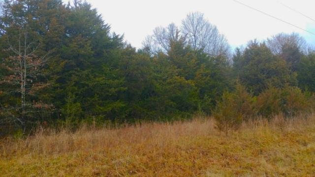 Lot D Indian Hills Block 40, Horseshoe Bend, AR 72512 (MLS #60101582) :: Greater Springfield, REALTORS