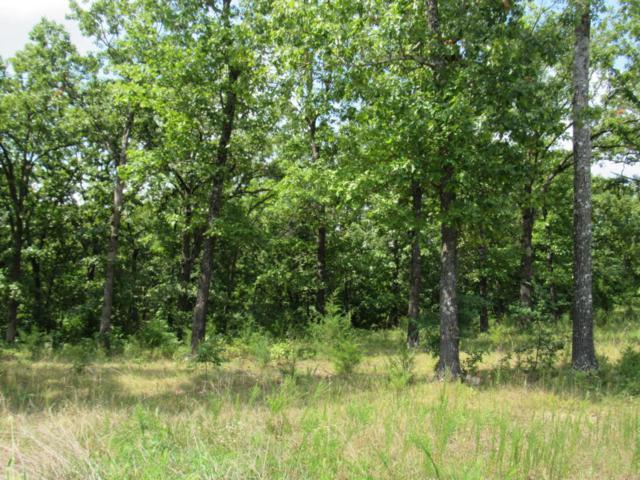 Lot 231 Vining Meadows Drive, Reeds Spring, MO 65737 (MLS #60101936) :: Greater Springfield, REALTORS