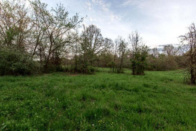 0 N Farm Rd 137, Brighton, MO 65617 (MLS #60101945) :: Team Real Estate - Springfield