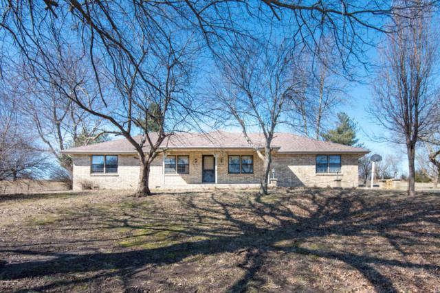 8425 Meadow Lake Drive, Willard, MO 65781 (MLS #60102004) :: Team Real Estate - Springfield