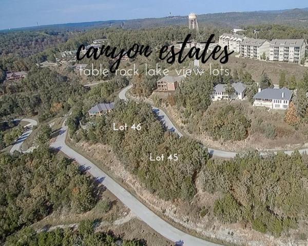 45 Canyon Parkway, Branson, MO 65616 (MLS #60102065) :: Clay & Clay Real Estate Team