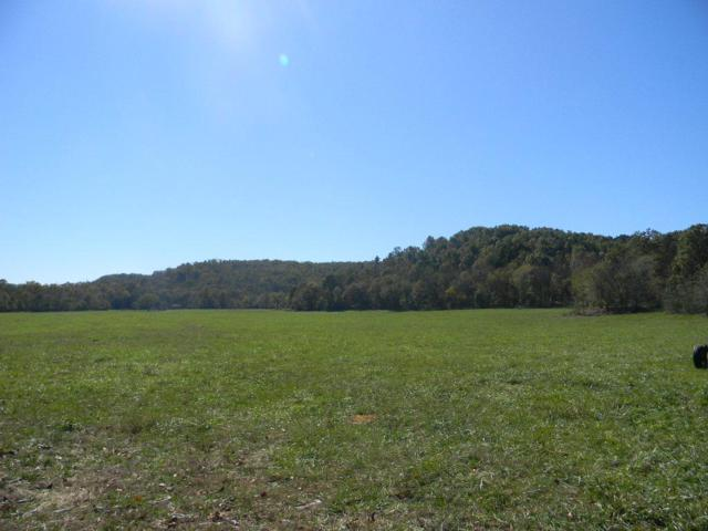 Tbd County Road C-10A, Doniphan, MO 63935 (MLS #60102508) :: Greater Springfield, REALTORS