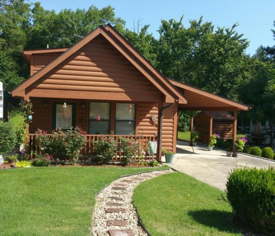 112 Foxhole Lane, Hollister, MO 65672 (MLS #60102534) :: Team Real Estate - Springfield