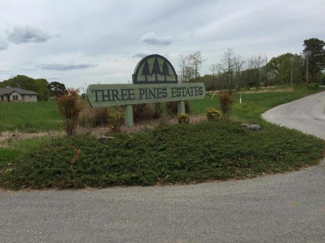 133 Three Pines Circle, Reeds Spring, MO 65737 (MLS #60102600) :: Team Real Estate - Springfield