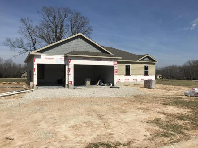 157 Three Pines Circle, Reeds Spring, MO 65737 (MLS #60102606) :: Team Real Estate - Springfield