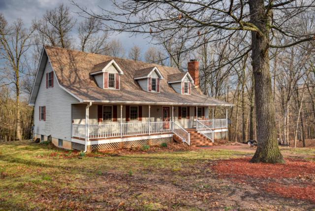 6945 N Farm Road 227, Strafford, MO 65757 (MLS #60102610) :: Team Real Estate - Springfield