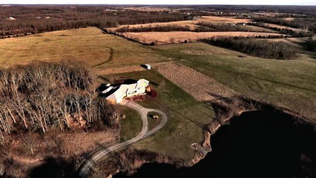 383 Safari Lane, Strafford, MO 65757 (MLS #60102631) :: Team Real Estate - Springfield