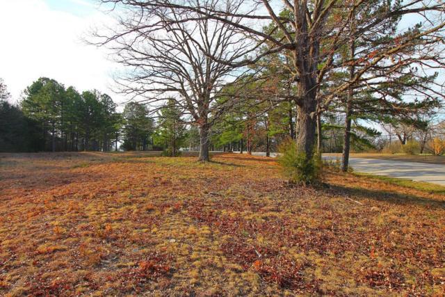 Lot 2 Ridgedale Road, Ridgedale, MO 65739 (MLS #60102775) :: Team Real Estate - Springfield