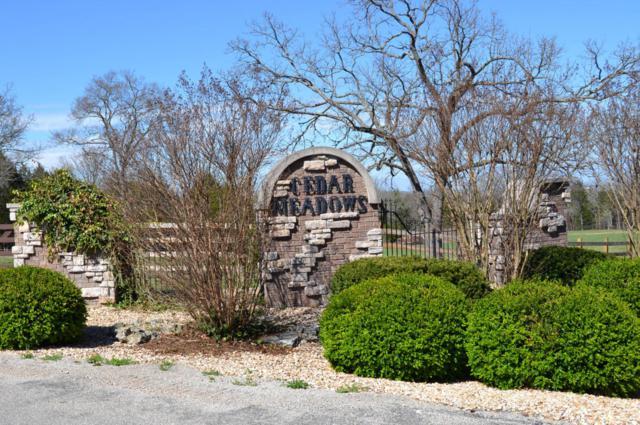 00 Cedar Meadows Lot Package, Branson, MO 65616 (MLS #60102790) :: Greater Springfield, REALTORS