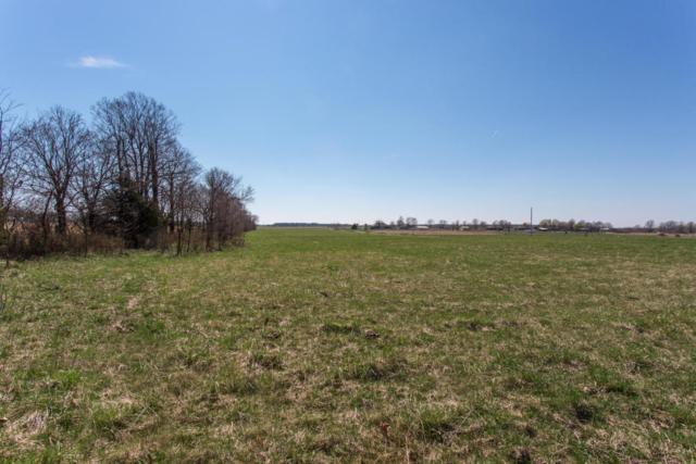 N/A W Farm Road 48, Willard, MO 65781 (MLS #60102794) :: Team Real Estate - Springfield