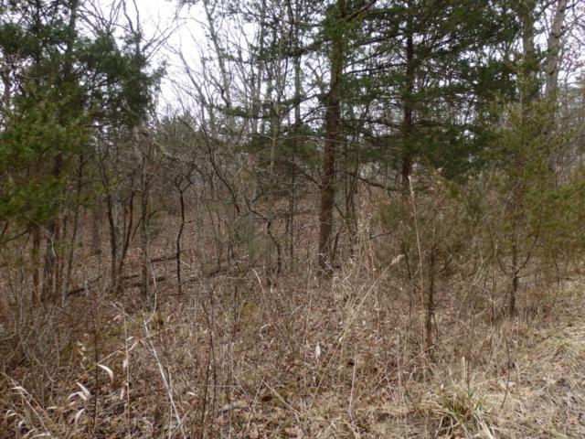 Tbd Minnow Bucket Trail, Wheatland, MO 65779 (MLS #60103348) :: Massengale Group