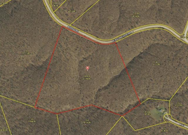 36 Mossy Oak Ln, Tunas, MO 65764 (MLS #60104074) :: Greater Springfield, REALTORS