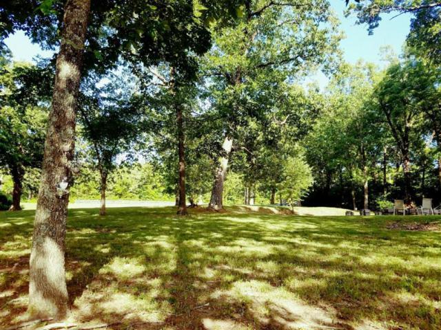 1313 Harris Boulevard, Ozark, MO 65721 (MLS #60104539) :: Team Real Estate - Springfield
