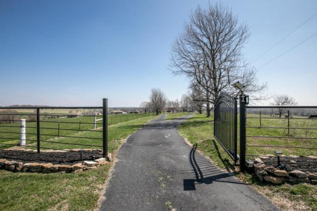 588 Hidden Valley Road, Clever, MO 65631 (MLS #60105167) :: Team Real Estate - Springfield