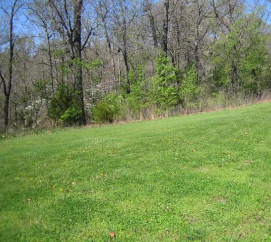 Lot 89 Yoachum Drive, Nixa, MO 65714 (MLS #60105336) :: Good Life Realty of Missouri