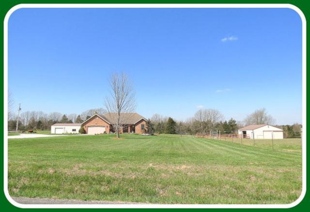 4375 White Oak Road, Fordland, MO 65652 (MLS #60105866) :: Good Life Realty of Missouri