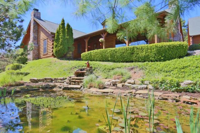 784 Oakwood Drive, Ridgedale, MO 65739 (MLS #60105867) :: Good Life Realty of Missouri