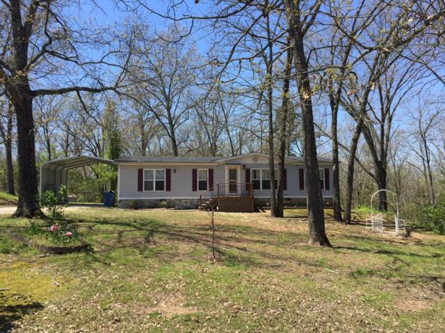227 Orlando Road, Kirbyville, MO 65679 (MLS #60106185) :: Greater Springfield, REALTORS