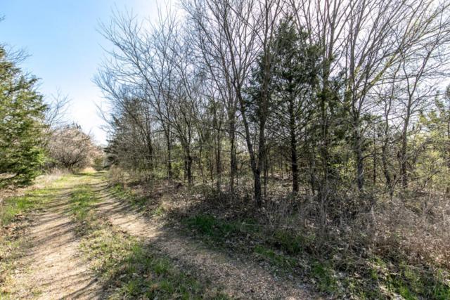 Lot 76 Cumberland Road, Shell Knob, MO 65747 (MLS #60106648) :: Greater Springfield, REALTORS