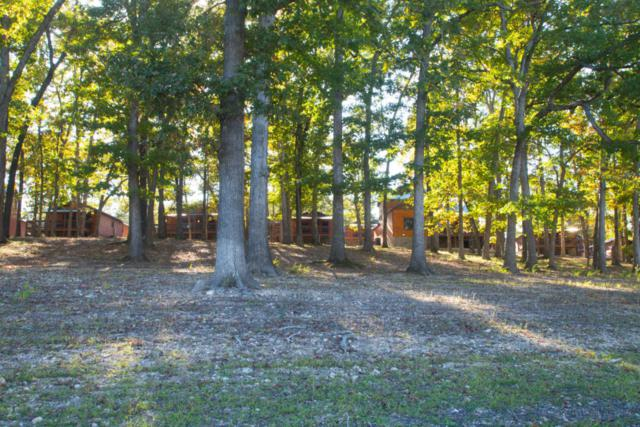 26 Cave Lane Cabin 12, Indian Point, MO 65616 (MLS #60106776) :: Greater Springfield, REALTORS