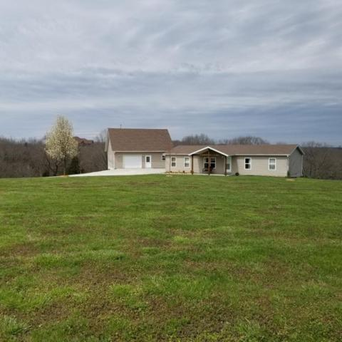 239 Mease Drive, Reeds Spring, MO 65737 (MLS #60106898) :: Team Real Estate - Springfield