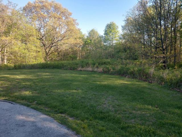 Lot 11 Valley View Road, Rogersville, MO 65742 (MLS #60107410) :: Team Real Estate - Springfield