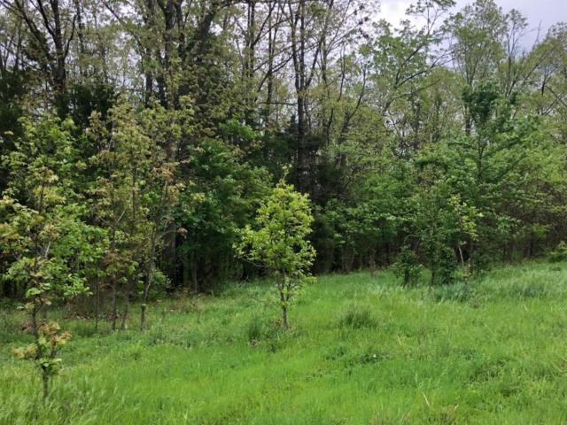 Tbd Smith Rd., Lampe, MO 65681 (MLS #60107541) :: Team Real Estate - Springfield