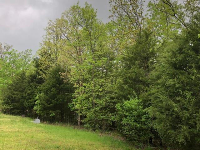 Tbd Smith Rd., Lampe, MO 65681 (MLS #60107546) :: Team Real Estate - Springfield