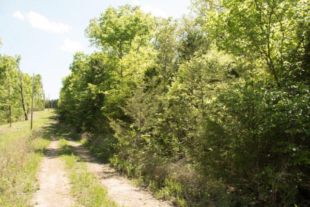 Lot 321 Tomahawk Heights, Shell Knob, MO 65747 (MLS #60107658) :: Greater Springfield, REALTORS