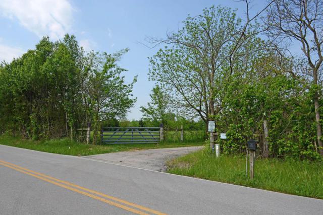 6105 S Farm Road 193, Rogersville, MO 65742 (MLS #60107674) :: Greater Springfield, REALTORS