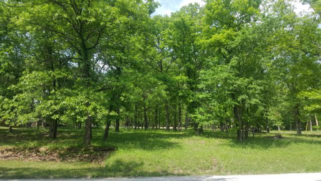 520 Bluebird Lane, Shell Knob, MO 65747 (MLS #60108002) :: Greater Springfield, REALTORS