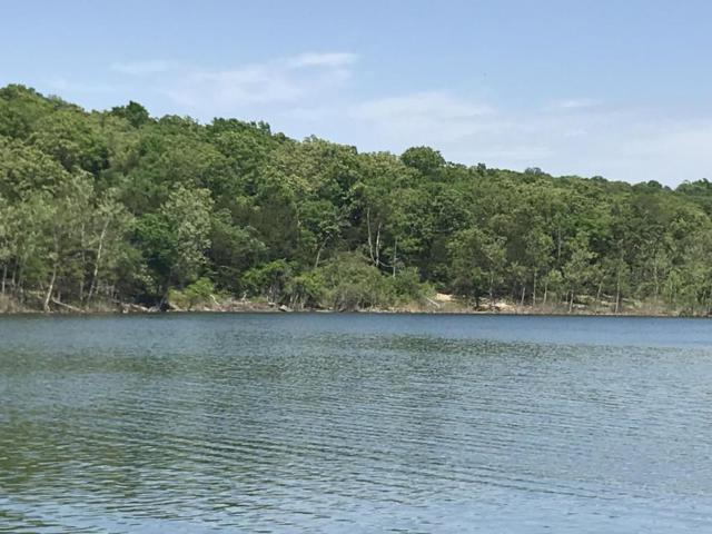 4 Lakefront Lots Alyeska Point, Lampe, MO 65681 (MLS #60108095) :: Greater Springfield, REALTORS