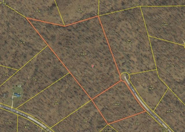 0 Persimmon Lane, Tunas, MO 65764 (MLS #60108482) :: Greater Springfield, REALTORS