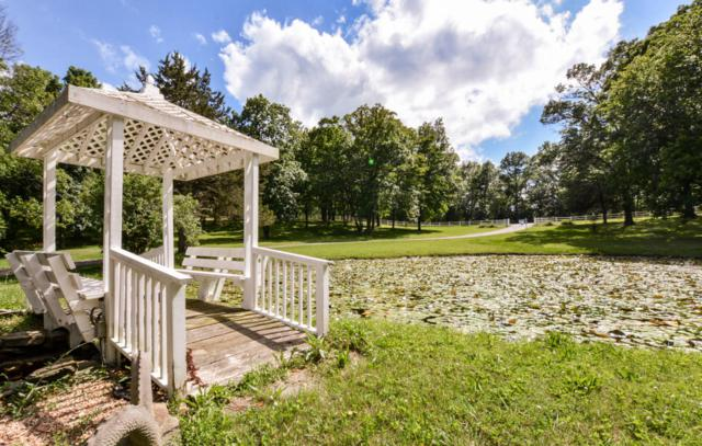 2725 W State Highway 76, Galena, MO 65656 (MLS #60108514) :: Greater Springfield, REALTORS