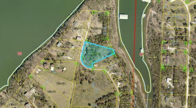 Lots 1 & 2 Kicking Mule Lane, Lampe, MO 65681 (MLS #60108602) :: Team Real Estate - Springfield