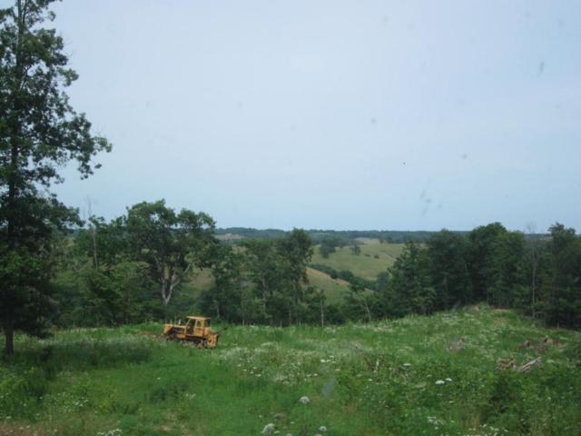 0 State Highway 248, Aurora, MO 65605 (MLS #60108701) :: Greater Springfield, REALTORS