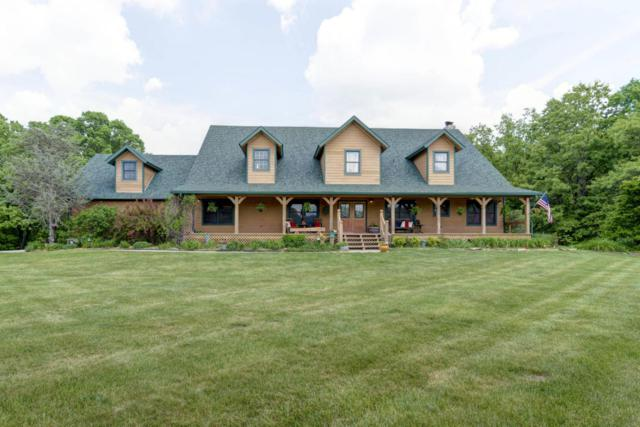 215 Ranch Drive, Rogersville, MO 65742 (MLS #60108797) :: Team Real Estate - Springfield