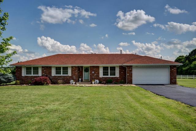 7036 E Farm Road 164, Rogersville, MO 65742 (MLS #60108853) :: Greater Springfield, REALTORS