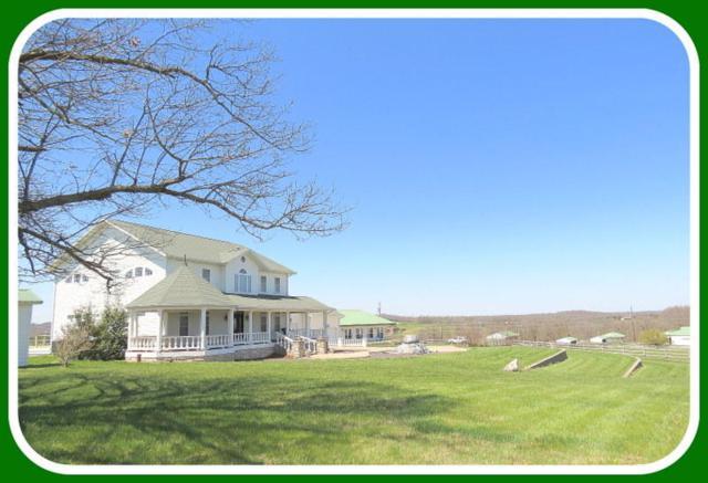 373-Alt 1 Holder Road, Clever, MO 65631 (MLS #60108978) :: Team Real Estate - Springfield