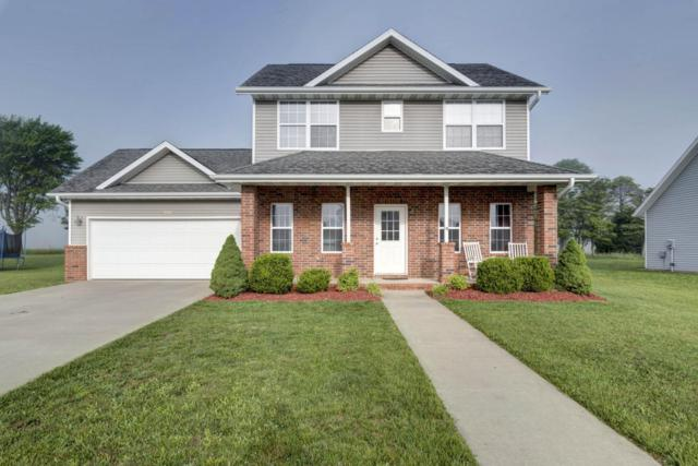 505 Patriot Place Drive, Rogersville, MO 65742 (MLS #60109019) :: Team Real Estate - Springfield
