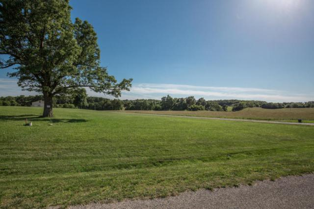 Lot 18 Cottage Gate Drive, Billings, MO 65610 (MLS #60109025) :: Greater Springfield, REALTORS