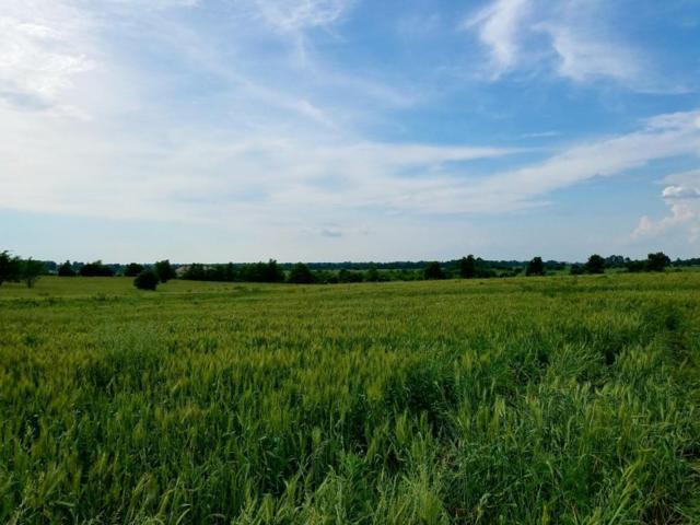 Tbd W Farm Rd 104, Springfield, MO 65803 (MLS #60109224) :: Greater Springfield, REALTORS