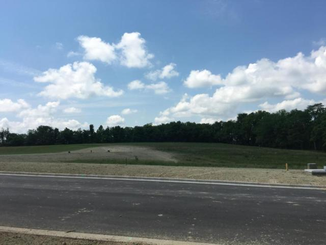 876 E Ailesbury Road, Nixa, MO 65714 (MLS #60109539) :: Good Life Realty of Missouri
