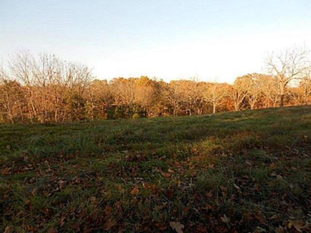 Lot 10 Stagecoach Drive, Pineville, MO 64856 (MLS #60109745) :: Greater Springfield, REALTORS