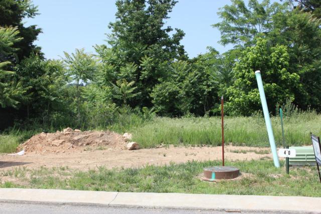 171 Lot 40 Ponderosa Pine Court, Hollister, MO 65672 (MLS #60110063) :: Good Life Realty of Missouri
