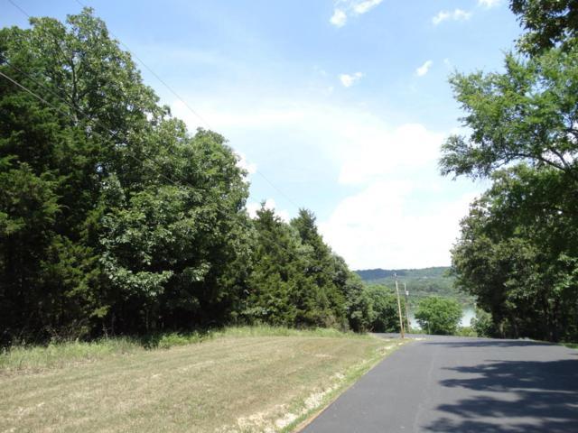 L1 Pioneer Point Road, Galena, MO 65656 (MLS #60110777) :: Weichert, REALTORS - Good Life