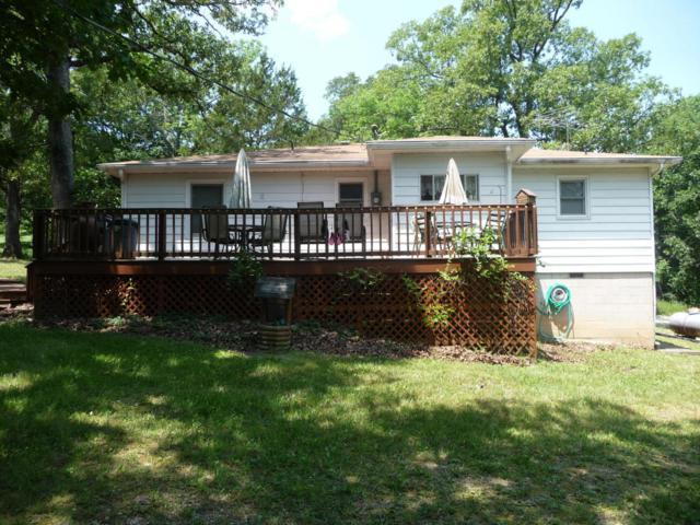 781 County Road 638, Theodosia, MO 65761 (MLS #60110853) :: Team Real Estate - Springfield