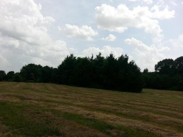 Lot 3 Sandy Forest Lane, Clever, MO 65631 (MLS #60110866) :: Greater Springfield, REALTORS